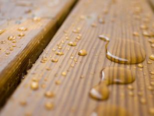 Антисептики для древесины: назначение, виды, возможности, выбор и нанесение