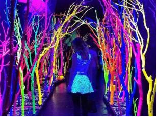 Феерия света: флуоресцентная и люминесцентная краска в интерьере ночного клуба