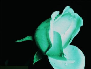 светящиеся и флуоресцентные краски