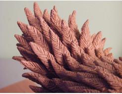 Скульптурный пластилин NSP Chavant Medium - изображение 6 - интернет-магазин tricolor.com.ua