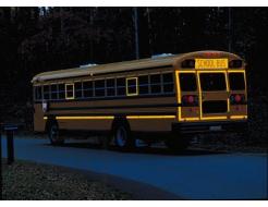 Лента светоотражающая 3М Diamond Grade 983-71 54мм/50м желтая для маркировки транспорта - изображение 2 - интернет-магазин tricolor.com.ua