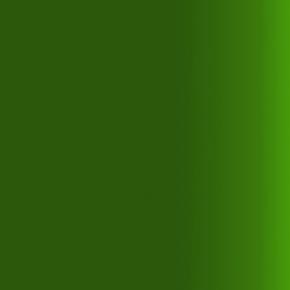 Краска для аэрографии прозрачная Зеленая Createx Airbrush Colors Transparent Tropical Green 5116 - изображение 2 - интернет-магазин tricolor.com.ua