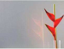 Краска для стекла PaliGlass FX 1070 металлик (RAL 9006, 9007) - изображение 2 - интернет-магазин tricolor.com.ua