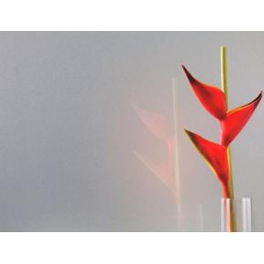Краска для стекла PaliGlass FX 1120 металлик (RAL 9006, 9007) - изображение 2 - интернет-магазин tricolor.com.ua