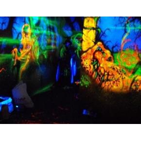 Краска флуоресцентная AcmeLight Fluorescent Concerte для бетона оранжевая - интернет-магазин tricolor.com.ua