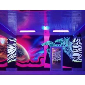Краска флуоресцентная AcmeLight Fluorescent Concerte для бетона белая - интернет-магазин tricolor.com.ua