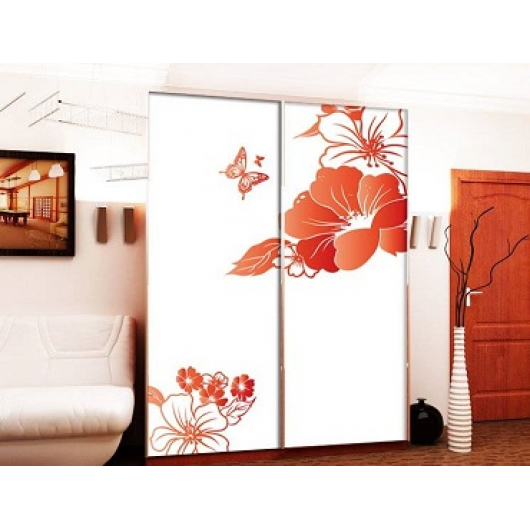 Двери для шкафа купе супер чистое стекло с покраской в 2 цвета