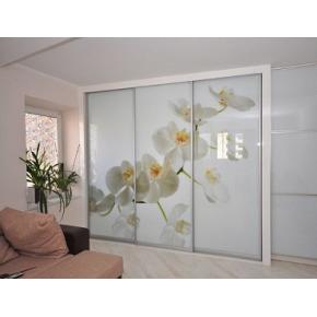 Двери для шкафа купе супер чистое стекло с фотопечатью