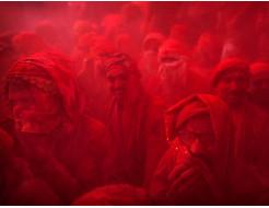 Краска Холи вишневая - изображение 3 - интернет-магазин tricolor.com.ua
