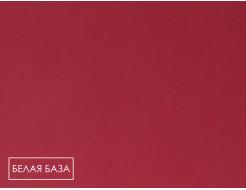 Пигмент органический красный светопрочный Tricolor BH-5RK/P.RED 170 - изображение 2 - интернет-магазин tricolor.com.ua