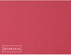 Пигмент органический красный светопрочный Tricolor BH-3RK/P.RED 170 - изображение 2 - интернет-магазин tricolor.com.ua