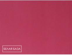 Пигмент органический красный светопрочный Tricolor BH-7RK/P.RED 266 - изображение 2 - интернет-магазин tricolor.com.ua