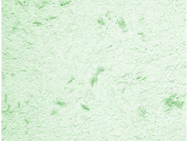 Жидкие обои Макс-Колор Тип 143/1 зеленые