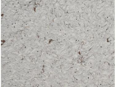 Жидкие обои Юрски Роза 618 серо-коричневые