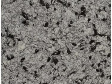 Жидкие обои Юрски Юка 1215 черно-белые