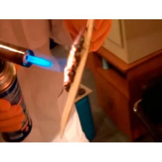 Огнебиозащитная краска Bionic House Fireproof coating для дерева - изображение 2 - интернет-магазин tricolor.com.ua
