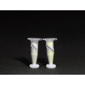 Набор из 2х люминесцентных красителей Люминофоров по 2г для Полиморфуса - изображение 2 - интернет-магазин tricolor.com.ua