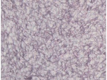 Жидкие обои Bioplast № 8672 бело-фиолетовые