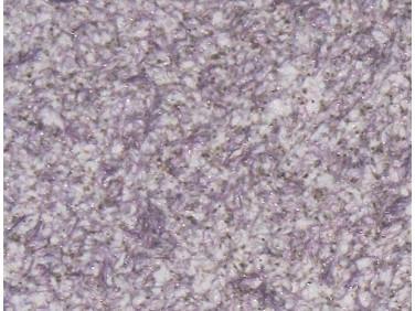 Жидкие обои Bioplast № 8673 бело-фиолетовые