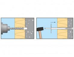 Дюбель для теплоизоляции с пластиковым гвоздем Амекс LI-P 10x100 - изображение 3 - интернет-магазин tricolor.com.ua