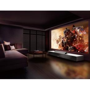 Интерьерная краска для экрана проектора Paintforpros BeamerPaint 2К - изображение 2 - интернет-магазин tricolor.com.ua