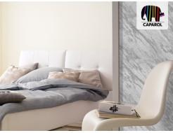 Краска интерьерная дисперсионная Caparol Capadecor Metallacryl Interior RAL 9006 - изображение 3 - интернет-магазин tricolor.com.ua