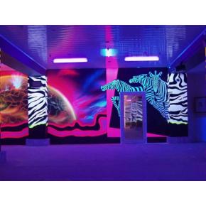 Краска флуоресцентная AcmeLight для творчества фиолетовая 20 мл - интернет-магазин tricolor.com.ua