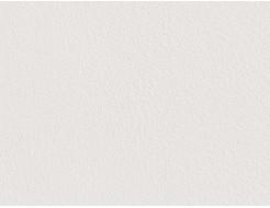 Краска грунтовочная Caparol Capatect Putzgrund 610 адгезионная - изображение 2 - интернет-магазин tricolor.com.ua