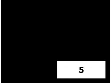 Краситель органорастворимый черный Tricolor 5