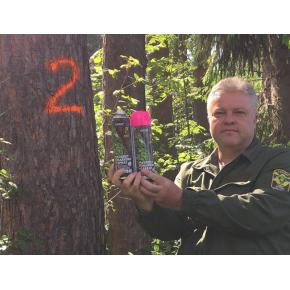 Флуоресцентная аэрозольная краска для маркировки леса Biodur Forest Marking Spray (оранжевая) - изображение 2 - интернет-магазин tricolor.com.ua