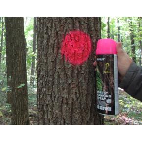 Флуоресцентная аэрозольная краска для маркировки леса Biodur Forest Marking Spray (розовая) - изображение 3 - интернет-магазин tricolor.com.ua