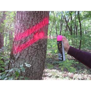 Флуоресцентная аэрозольная краска для маркировки леса Biodur Forest Marking Spray (розовая) - изображение 5 - интернет-магазин tricolor.com.ua
