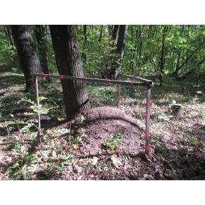 Флуоресцентная аэрозольная краска для маркировки леса Biodur Forest Marking Spray (розовая) - изображение 4 - интернет-магазин tricolor.com.ua