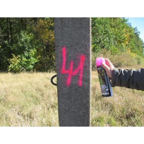 Флуоресцентная аэрозольная краска для маркировки леса Biodur Forest Marking Spray (розовая) - изображение 2 - интернет-магазин tricolor.com.ua