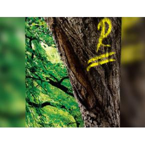 Флуоресцентная аэрозольная краска для маркировки леса Biodur Forest Marking Spray (желтая) - изображение 4 - интернет-магазин tricolor.com.ua