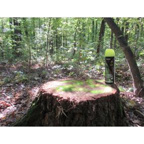 Флуоресцентная аэрозольная краска для маркировки леса Biodur Forest Marking Spray (желтая) - изображение 2 - интернет-магазин tricolor.com.ua