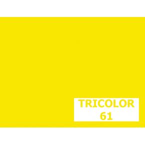 Пигмент органический желтый светопрочный Tricolor 61 - интернет-магазин tricolor.com.ua