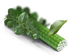 Композитная опора для растений LIGHTgreen 8 мм - изображение 6 - интернет-магазин tricolor.com.ua