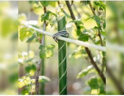 Композитная опора для растений LIGHTgreen 10 мм - изображение 2 - интернет-магазин tricolor.com.ua