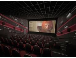 Акустическая влагостойкая гладкая плита Rockfon Industrial Black BF 2400x1200x40 - изображение 6 - интернет-магазин tricolor.com.ua