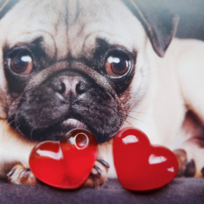 Краситель для смол и полиуретанов Marbo красный - изображение 3 - интернет-магазин tricolor.com.ua