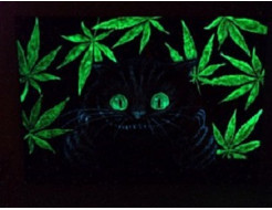 Краска люминесцентная AcmeLight для интерьера зеленая - изображение 3 - интернет-магазин tricolor.com.ua