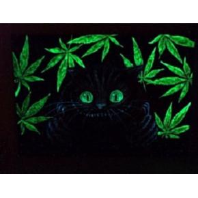 Краска люминесцентная AcmeLight для интерьера зеленая - изображение 2 - интернет-магазин tricolor.com.ua