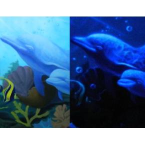 Краска люминесцентная AcmeLight Interior для стен белая - интернет-магазин tricolor.com.ua