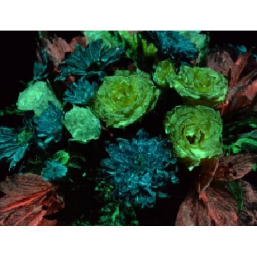 Краска люминесцентная AcmeLight Flower для цветов желтая - интернет-магазин tricolor.com.ua