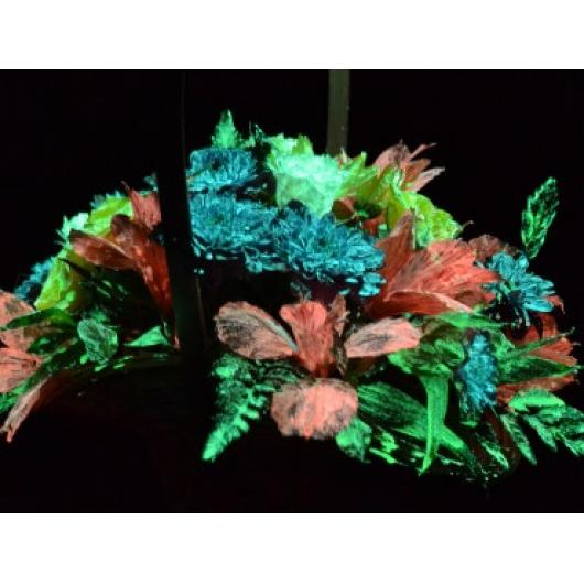 Краска люминесцентная AcmeLight Flower для цветов красная - интернет-магазин tricolor.com.ua
