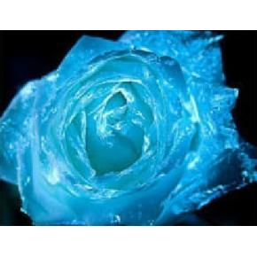 Краска люминесцентная AcmeLight Flower для цветов синяя