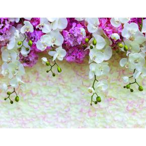 Фотообои Lux Design #1 Цветы бело-сиреневые
