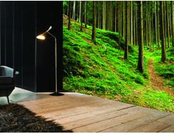 Фотообои Lux Design #8 Лес - изображение 2 - интернет-магазин tricolor.com.ua